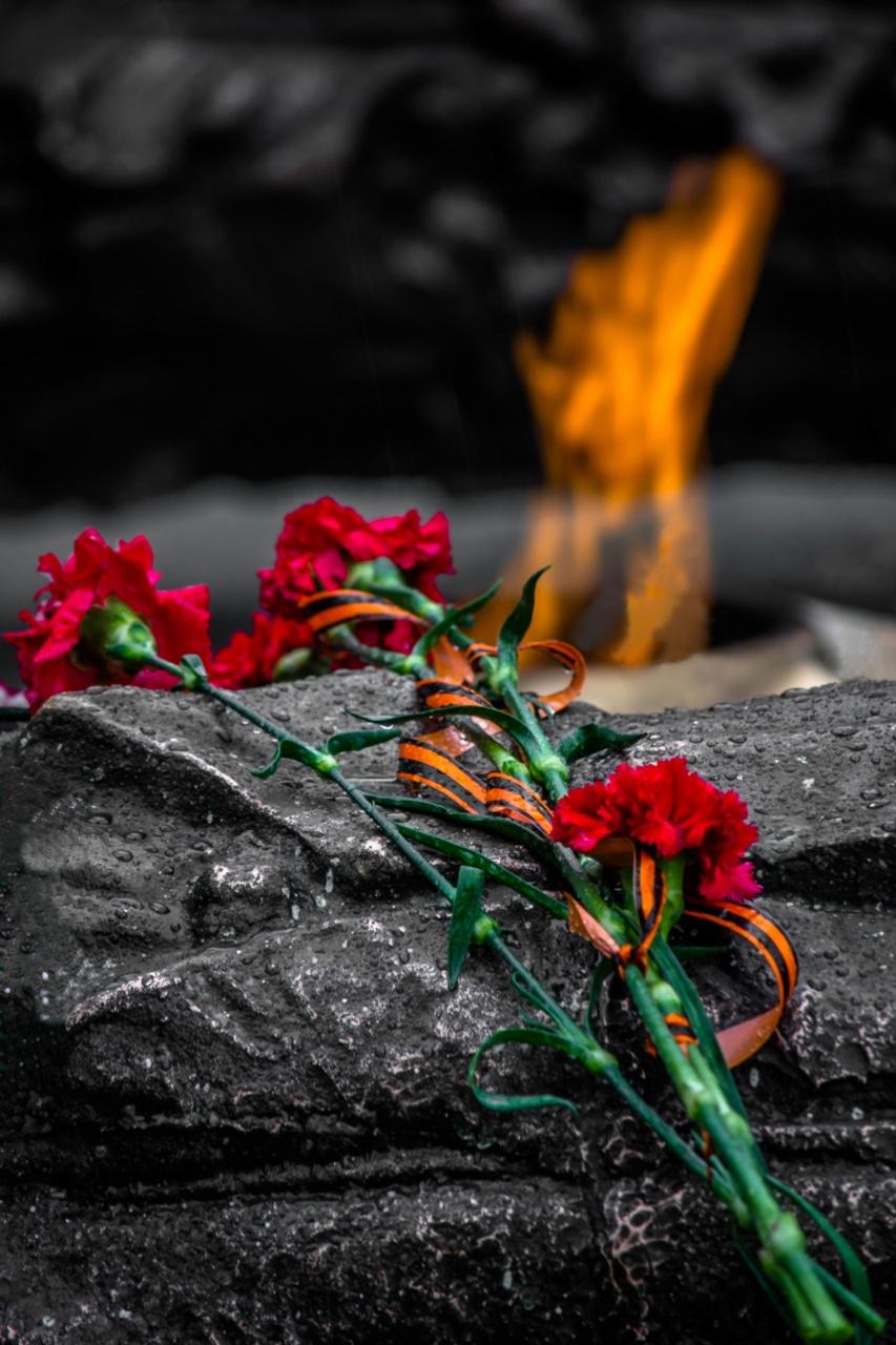 Фото цветов в память